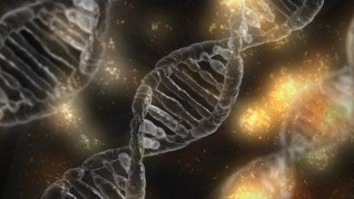 Photo of سیاست های حفظ حریم خصوصی بر تعداد آزمایش های ژنتیکی تاثیر می گذارد