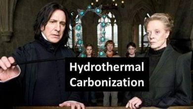 تولید جادویی زغالسنگ هیدروترمال توسط پروفسور اسنپ – اخبار زیست فناوری