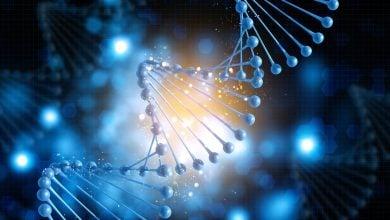 Photo of آزمایش جدیدی برای تعیین دقیق آسیب وارده به DNA براثر ترکیبات شیمیایی