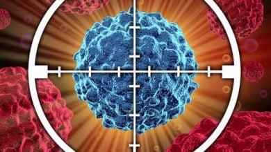 Photo of درمان سرطان با لاغرکردن سلولهای سرطانی!