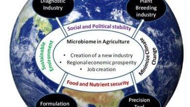 Photo of محصولات بر پایه میکروبیوم ، نوید کشاورزی پایدار
