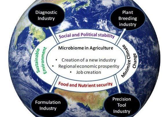 محصولات بر پایه میکروبیوم ، نوید کشاورزی پایدار - اخبار زیست فناوری