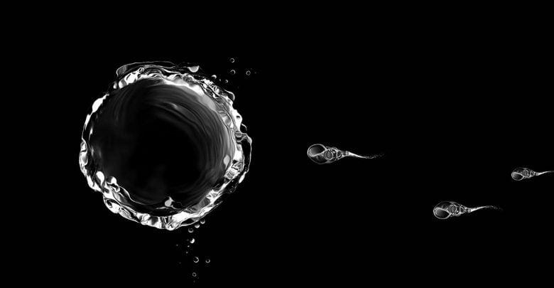 اسپرم حامل داروهای شیمی درمانی به درمان سرطان گردن رحم کمک میکند!_اخبار زیست فناوری