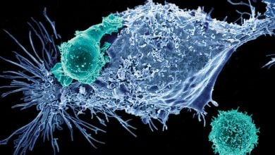 Photo of تصویب  ژن درمانی برای دو سرطان خون