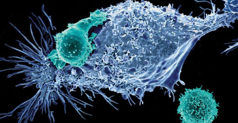 تصویب ژن درمانی برای دو سرطان خون_اخبار زیست فناوری