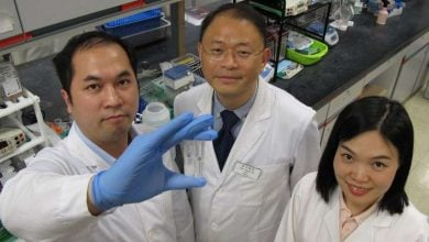 Photo of محققان نسل جدیدی از ترکیبات تومور خاص aptamer-drug را ایجاد می کنند