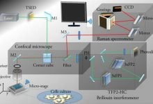 New Single-Cell Microspectroscopy Methods Could Improve Diagnostics