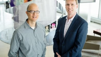Cancer drug starts clinical trials in human brain-cancer patients