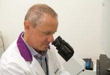چگونه ژن تازه کشفشده به رشد عروق کمک میکند - اخبار زیست فناوری