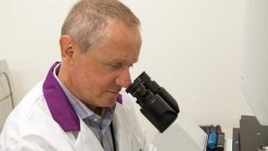 Photo of چگونه ژن تازه کشفشده به رشد عروق کمک میکند