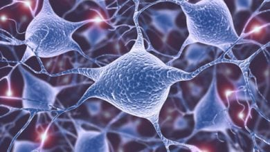Photo of Alzheimer's Study Disentangles Tau–Membrane Interactions Linked with Tau Aggregation
