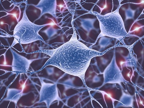 Alzheimer's Study Disentangles Tau–Membrane Interactions Linked with Tau Aggregation