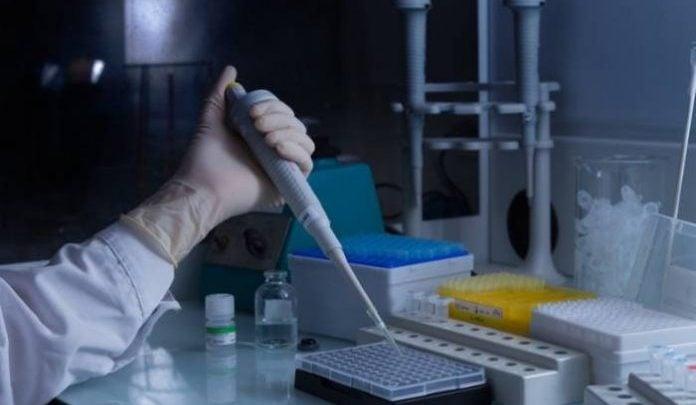 Namibia opens first GMO laboratory - اخبار زیست فن