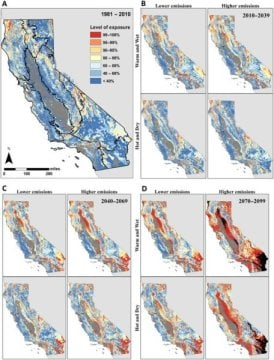 Nearly half of California's vegetation at risk from climate stress - اخبار زیست فن