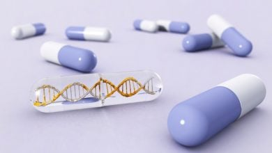 New 'checkpoint' model that could identify potential drugs to treat genetic disorders