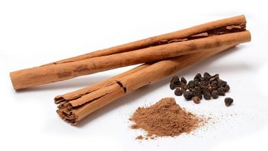 Photo of Fat Cells Feel the Burn when Metabolism is Spiced with Cinnamon