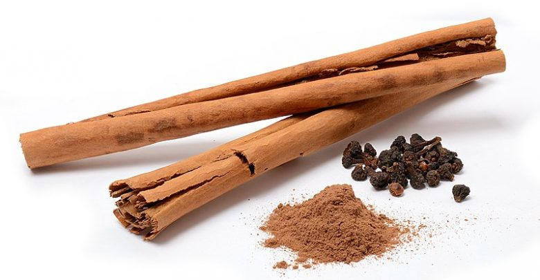 Fat Cells Feel the Burn when Metabolism is Spiced with Cinnamon