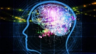 قیچی آنزیمی جهت جلوگیری از بیماری آلزایمر - اخبار زیست فناوری