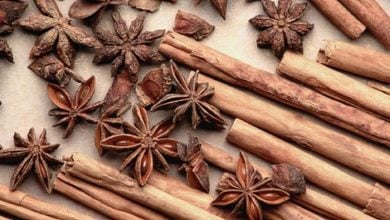 Photo of Cinnamon shows potential as tool in fight against obesity