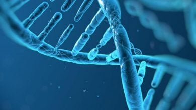 Photo of اثر ژنوتیپ آپولیپوپروتئین E بر تغییرات شناختی در طول زندگی