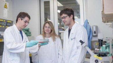 Photo of تشویق حمله اکسیژن به آهن راهی جدید برای کشتن سلول های سرطانی