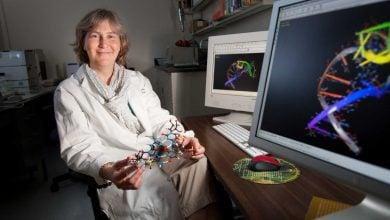 انقلابی در کشف دارو با RNA - اخبار زیست فناوری
