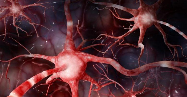 فسفریلاسیون tau در درمان آلزایمر – اخبار زیست فناوری