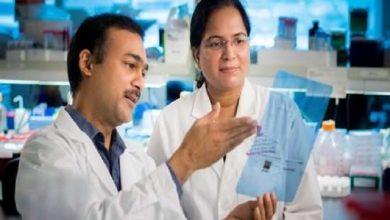 Photo of دوبرابر شدن عامل سیستم ایمنی، اتحاد جدید برای مقابله با سرطان