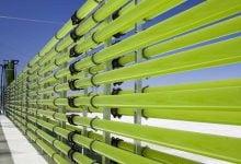 رفع نیازهای جهان با کمک میکروارگانیسم های سبز – اخبار زیست فناوری