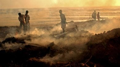 DROUGHT CAUSING HIGHEST LOSSES IN AGRI AMONG ALL DISASTERS, REPORT - اخبار زیست فن
