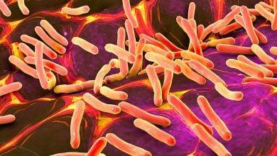 Photo of یک روش درمانی جدید علیه باکتری های مقاوم به آنتی بیوتیک