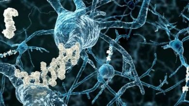Photo of آنالیز پروتیئنها و داروهای شخصی