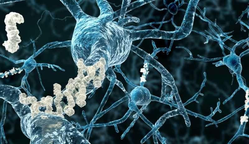آنالیز پروتیئنها و داروهای شخصی – اخبار زیست فناوری