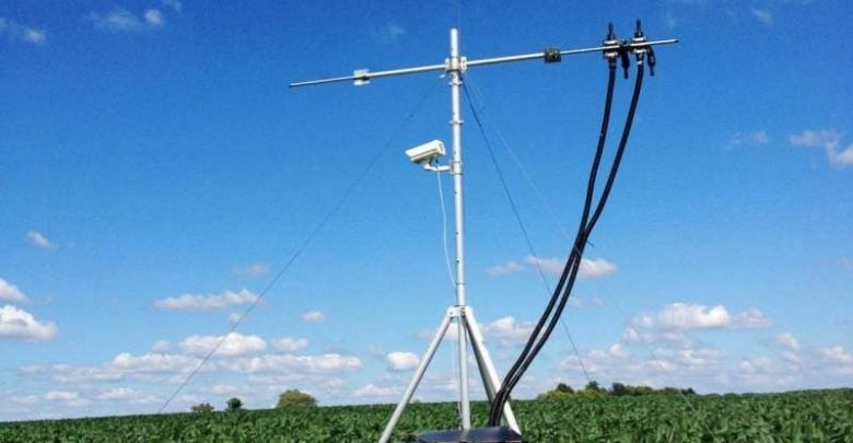 RESEARCHERS MONITOR PHOTOSYNTHESIS IN SOYBEAN USING INVISIBLE LIGHT - اخبار زیست فن