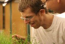 Researchers develop new method to improve crops - اخبار زیست فن