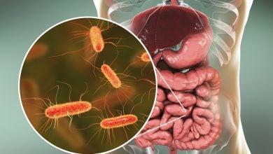 کدام میکروبیوم ما را شکل میدهد؟ ژنتیک یا سبک زندگی!
