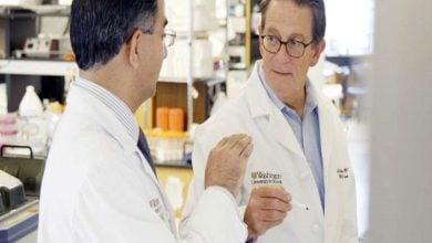 Photo of CRISPR ، ایمنی درمانی سرطان را ارتقا میدهد
