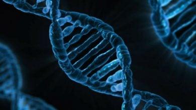 رمزگشایی ترکیبات ژنتیکی کنترلکننده بیماریهای پیچیده-زیست فن