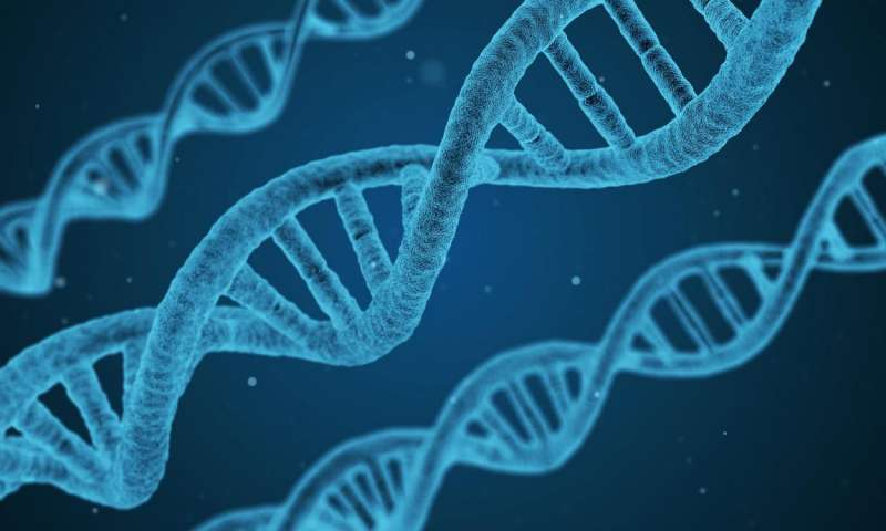 کشف تنوع ژنتیکی به منظور کمک به بیماران آسمی – اخبار زیست فناوری