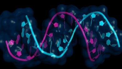 کشف مولکولهای miRNA موجود در گردش خون با قابلیت پیشبینی وقوع اختلالات ریتمیک قلب-زیست فن