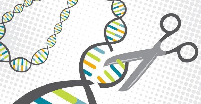 ایجاد سیستم CRISPR-Cas9 اصلاحشده برای درمان برخی بیماریها - اخبار زیست فناوری