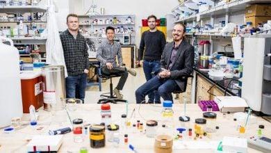 Photo of تولید هیدروژلهای هوشمند دارورسان با الهام از گیتهای منطقی ریاضی