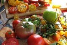 Photo of آن سوی گوجهها!