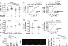 Photo of تشخیص روشی برای درمان لوسمی مزمن لنفوسیتی