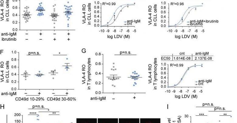 تشخیص روشی برای درمان لوسمی مزمن لنفوسیتی - اخبار زیست فناوری