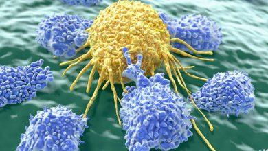 Photo of سیستم ایمونوتراپی کنترل از راه دور برای درمان سرطان