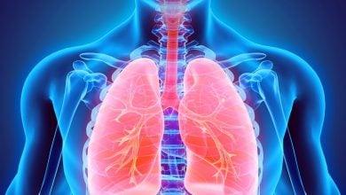 Photo of اثر غالب عوامل محیطی بر سلامت سیستم تنفسی
