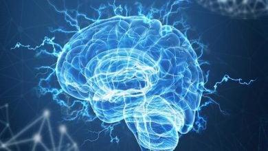 Photo of ارتباط خون جوان و پروتئین مغزی در موش