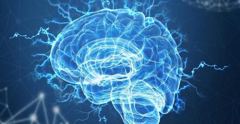 ارتباط خون جوان و پروتئین مغزی در موش-زیست فن