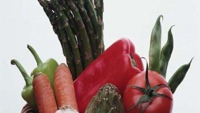 ارتباط ترکیبات آلی فرار با رژیم غذایی-زیست فن
